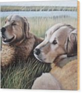 Two Golden Retriever Wood Print