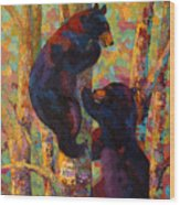 Two High - Black Bear Cubs Wood Print