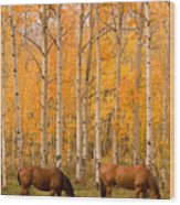 Two Horses Grazing In The Autumn Air Wood Print