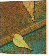 Two Leaves Or Not Two Leaves Wood Print