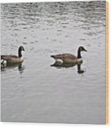 Two Lovely Canadian Geese Wood Print by Douglas Barnett