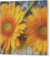 Two Lovely Sunflowers Wood Print