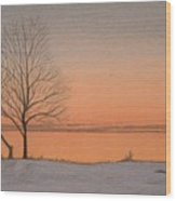 Two Lovers At Sunset Wood Print