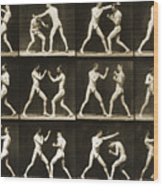 Two Men Boxing Wood Print
