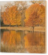 Two Orange Trees Wood Print