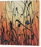 Two Orbs Meet In A Field At Sunset Wood Print