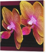 Two Orchids And A Bud Wood Print