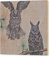 Two Owls Wood Print