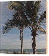 Two Palms And The Gulf Of Mexico Wood Print