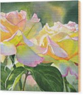 Two Peace Rose Blossoms Wood Print