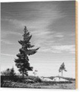 Two Pines Wood Print
