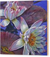 Two Pink Water Lilies Wood Print