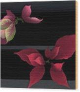 Two Poinsettias Wood Print