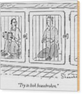 Two Prisoners Sit In Separate Dog Kennel Cells Wood Print