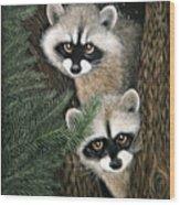 Two Raccoons Wood Print