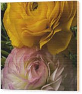 Two Ranunculus Wood Print