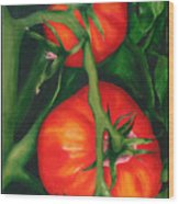 Two Red Tomatoes Wood Print by Pepe Romero