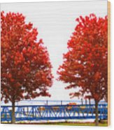 Two Red Trees Wood Print