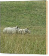 Two Rhino In The Grass Wood Print