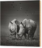 Two Rhinoceros With Birds In Bw Wood Print