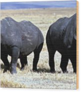 Two Rhinos Wood Print