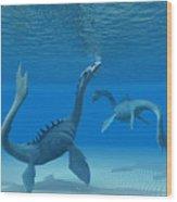 Two Sea Dragons Wood Print