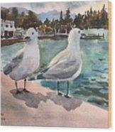 Two Seagulls By The Sea Wood Print