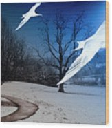 Two Seagulls Fly Together In The Clear Blue Sky Wood Print by Fernando Cruz