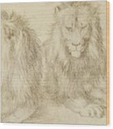 Two Seated Lions Wood Print