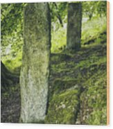Two Standing Stones Wood Print