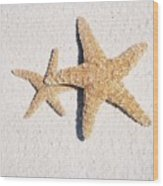 Two Starfish On The White Sand Wood Print