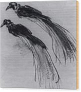 Two Studies Of A Bird Of Paradise 1630 Wood Print
