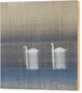 Two Swans In Movement Wood Print