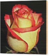 Two Tone Rose Wood Print
