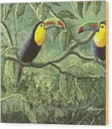 Two Toucans Wood Print