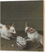 Two Toy Spaniels At A Sugar Bowl Wood Print