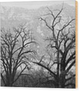 Two Trees Flatirons Boulder Colorado Wood Print