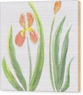 Two Iris II Watercolor Wood Print