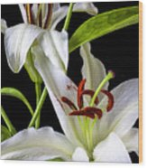 Two Wonderful Lilies  Wood Print