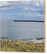 Tynemouth Piers And Lighthouses Panorama Wood Print