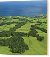 Typical Azores Islands Landscape Wood Print
