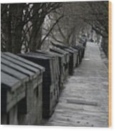 Typical Book Stands Along Seine, Autumn Wood Print