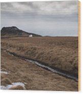 Typical Icelandic Mountain Landscape Wood Print