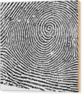 Typical Whorl Pattern In 1900 Wood Print