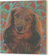 Long-haired Dachshund Wood Print