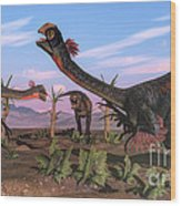 Tyrannosaurus Rex Attacking Wood Print