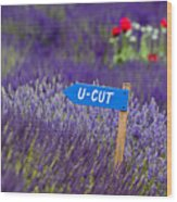 U-cut Lavender Wood Print