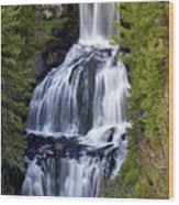Udine Falls Wood Print by Marty Koch