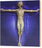 Holy Ufo Wood Print