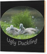 Ugly Duckling Wood Print